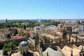 From atop the Seville Cathedral